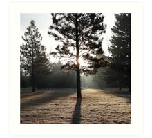 LG G5 Foggy Sunlight Art Print