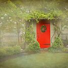 The Red Door by Marilyn Cornwell