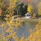 Gazebo at Centennial Park in Fall by caybeach