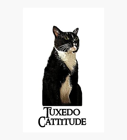 Tuxedo Cattitude Photographic Print