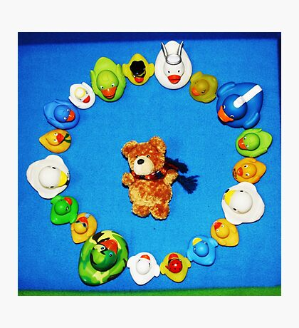 Benny Bear in Duck Blessing Circle, from above Photographic Print
