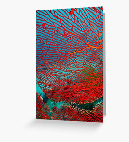 Red Fan Swaying Greeting Card