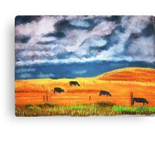 Ekalaka cows grazing before store Canvas Print