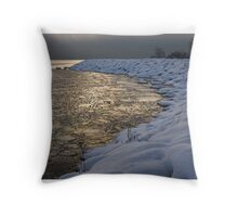 Lily Pad Ice Shines in the Silver Storm Light  Throw Pillow