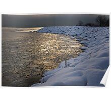 Lily Pad Ice Shines in the Silver Storm Light  Poster