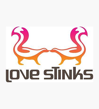 Love Stinks! Photographic Print