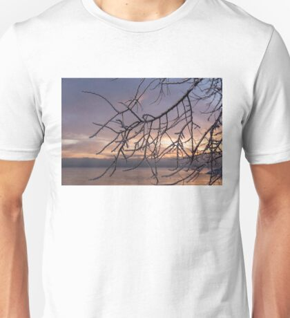 Beautiful Aftermath of an Ice Storm - Branch Pattern on Rosy Blues - Left Unisex T-Shirt