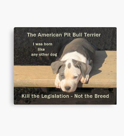 Unfair Breed Specific Legislation Canvas Print