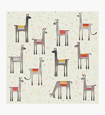 Llamas in the Meadow Photographic Print