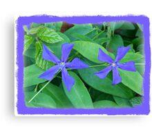 Floral Blue. Canvas Print