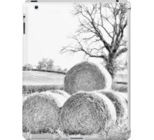 Hay Bales In Countryside iPad Case/Skin
