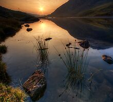 The Morning Light by Darren Wilkes
