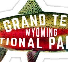 GRAND TETON NATIONAL PARK WYOMING FISHING VINTAGE RAINBOW STEELHEAD Sticker