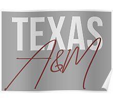 Texas A&M University Poster