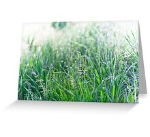 Green Grass with Raindrops Greeting Card