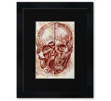 Anatomical Skull- Study in Red Framed Print