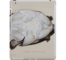 Tortoises terrapins and turtles drawn from life by James de Carle Sowerby and Edward Lear 056 iPad Case/Skin