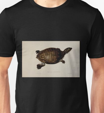 Tortoises terrapins and turtles drawn from life by James de Carle Sowerby and Edward Lear 055 Unisex T-Shirt