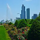 Grant Park Chicago Illinois USA by Jonathan  Green