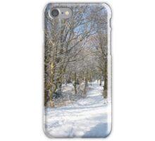 Snow Path iPhone Case/Skin