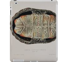 Tortoises terrapins and turtles drawn from life by James de Carle Sowerby and Edward Lear 036 iPad Case/Skin