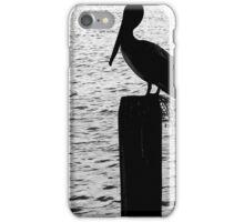 Brown Pelican in Silhouette iPhone Case/Skin