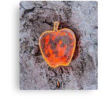 Apple on the Beach - part 7 Canvas Print