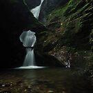 Nectans Glen Waterfall by Paul  Eden