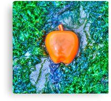 Apple on the Beach - part 9 Canvas Print