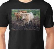 long horn cows Unisex T-Shirt