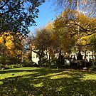 Autumn Colors, Union Square, New York City by lenspiro
