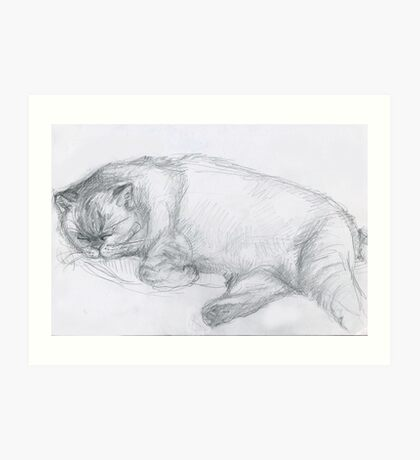 Sketch of Marmalade Art Print