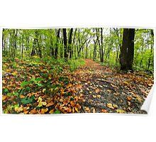 LG G5 Autumn Maplewood Poster