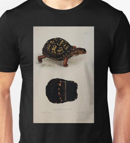 Tortoises terrapins and turtles drawn from life by James de Carle Sowerby and Edward Lear 022 Unisex T-Shirt