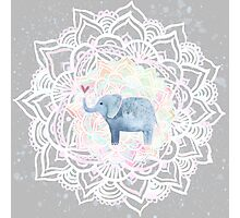 Cute little elephant with heart - valentine Photographic Print