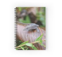 Anole Spiral Notebook