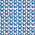 Blue butterflies. by Mary Taylor