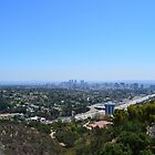 Los Angeles city landscape from Getty Center.  by naturematters