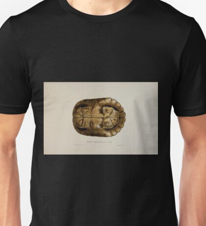 Tortoises terrapins and turtles drawn from life by James de Carle Sowerby and Edward Lear 041 Unisex T-Shirt