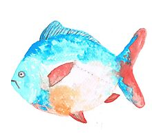 Water Colour Fish from the tropics Photographic Print