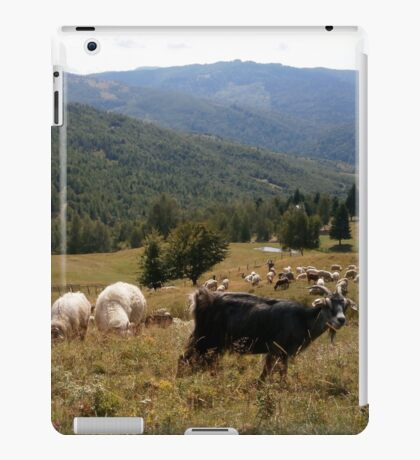 Looking for serenity iPad Case/Skin