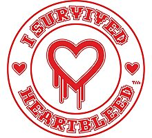 I Survived Heartbleed Photographic Print