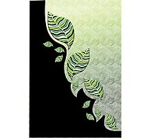 GREEN/BLACK LEAF ABSTRACT 1 Photographic Print
