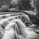 """""""Flowing Free"""" by Bradley Shawn  Rabon"""