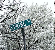 Spring Street Indeed! by Jane Neill-Hancock