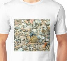 Dung Beetle with Dung Ball Unisex T-Shirt