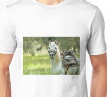 Horse on Lesvos Unisex T-Shirt