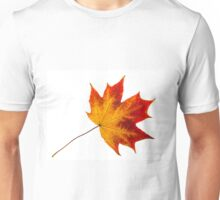 autumn leaves. Isolation with clipping paths Unisex T-Shirt