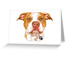 Pit Bull Red Greeting Card