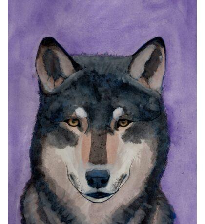 Mexican Wolf Watercolor Purple Sticker